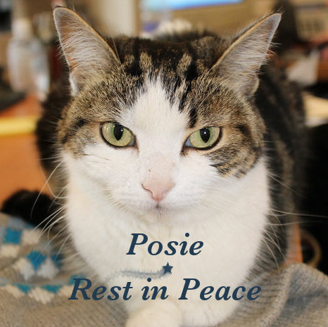 Rest in Peace - Image of Posie.