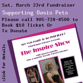 Announcing Oasis Fundraiser March 23, 2013