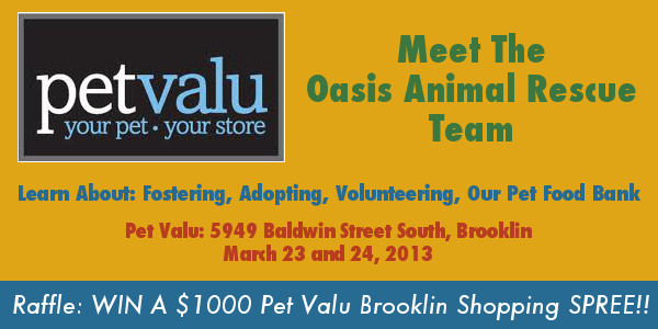 Oasis Fundraiser, Pet Valu Brooklin - Win $1000 Shopping Spree