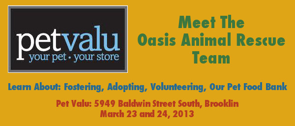 Oasis Team Will Be At Pet Valu Brooklin