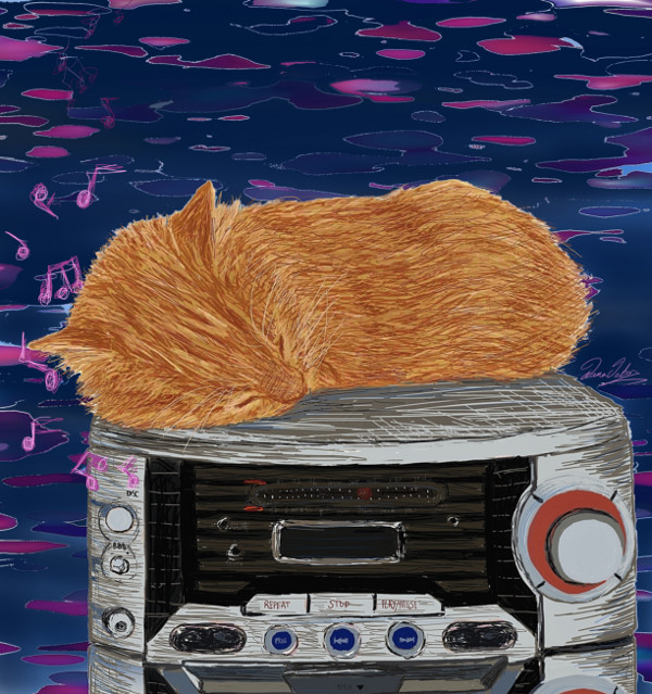 Cat On Radio by artist Diana Jaber to support Oasis Animal Rescue
