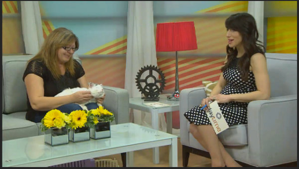 Olaf the rescue cat and Oasis staff member Cora Wideman visit Rogers TV - watch video