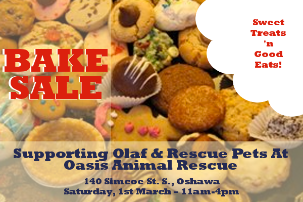 Bake Sale at Oasis Animal Rescue, Oshawa, Ontario 1st March 2014