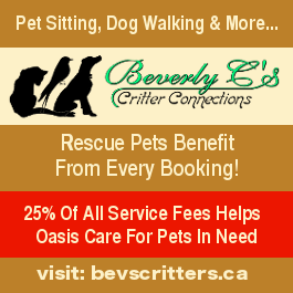 Notice: Beverly Cs pet sitting, dog walking supports Oasis Animal Rescue