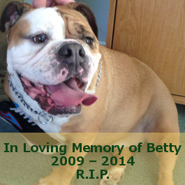 In Loving Memory Of English Bulldog Betty.