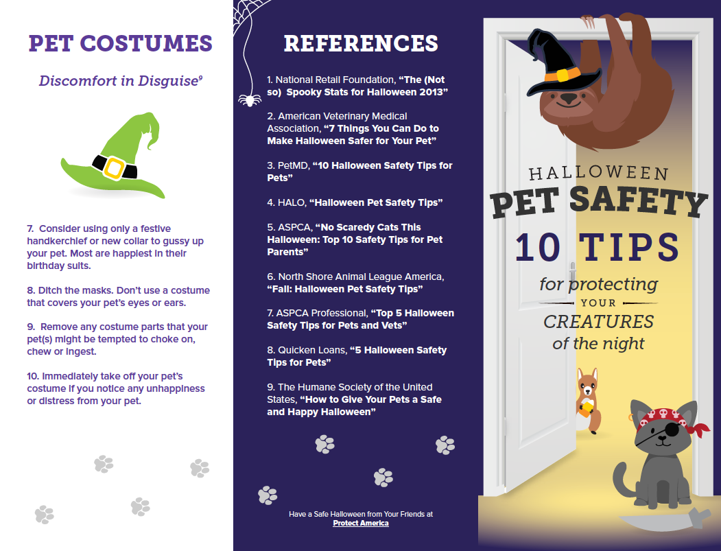 Halloween Pet Safety Guide 1